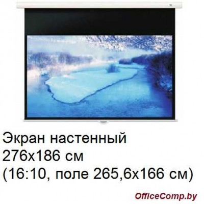 Экран настенный Seemax Enjoyable manual MW 276x186 см